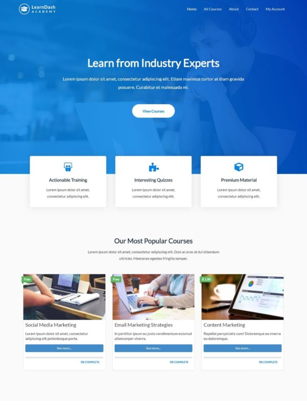 Learndash Academy Web Site Template