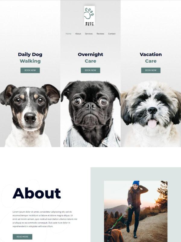Pet Care Web Site Template
