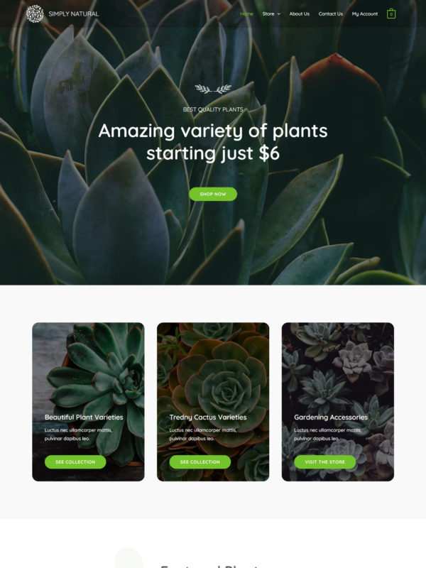 Simply Natural Web Site Template
